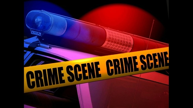 Police in LeRoy Arrest Two Men in Connection With Armed Robbery