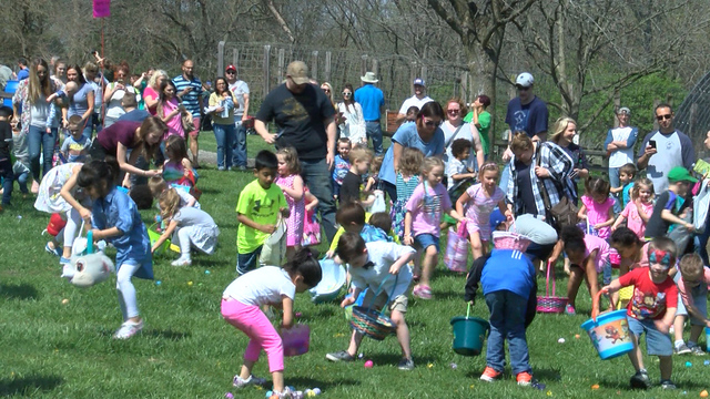 Easter Egg Hunts Abound