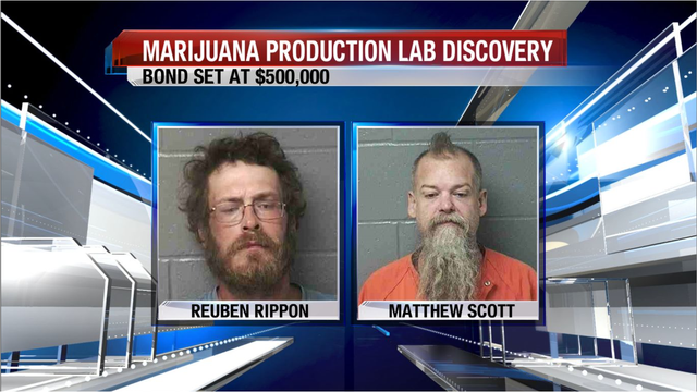 Extensive investigation leads to marijuana lab bust
