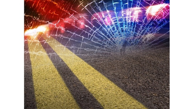 UPDATE: Woman, dog killed in Fulton County crash