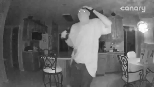 Burglary at Ironwood home