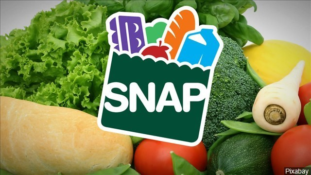 March SNAP benefits will be issued on March 1st for all Illinois recipients